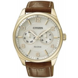 Citizen Herrenuhr Elegant Metropolitan Eco-Drive AO9024-16A Multifunktions